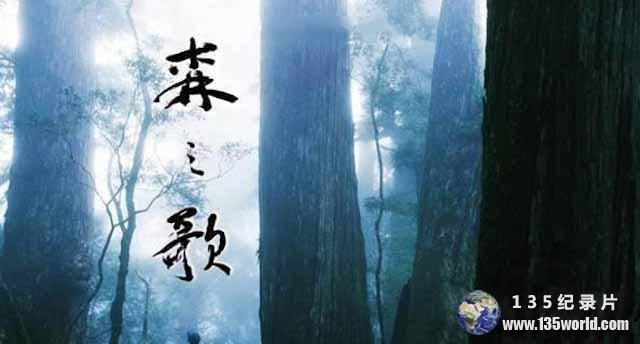 PTS自然生态纪录片《森之歌 Song of the Forest》全1集